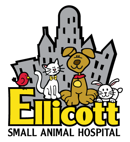Sponsor of the Month: Ellicott Small Animal Hospital,